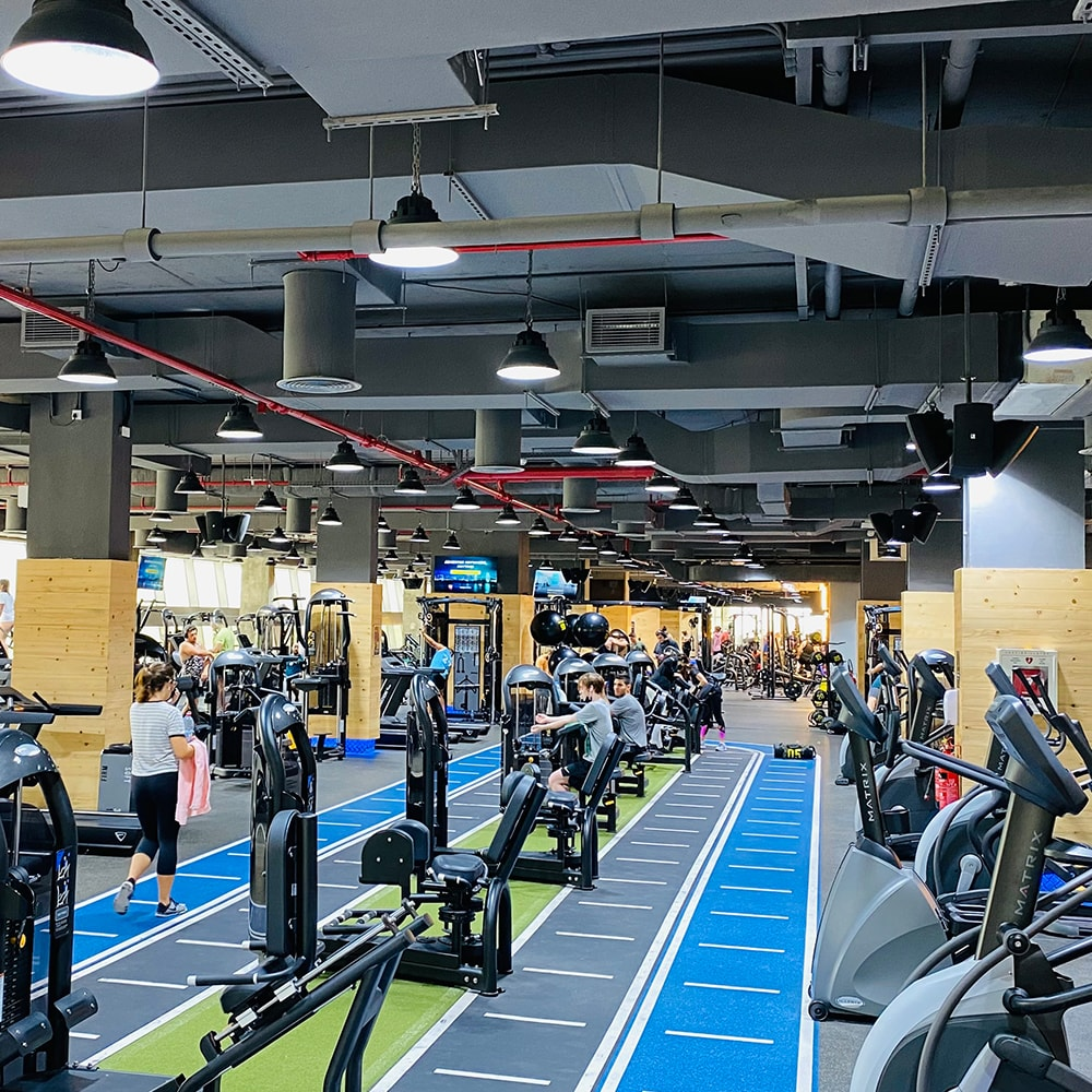 Gymnation - Dubai, United Arab Emirates