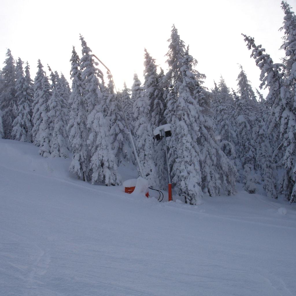 Planai and Hogwurzen ski slope - Schladming, Austria