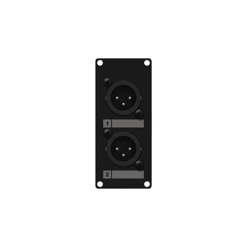 CASY126 - CASY 1 space with 2x XLR male to 3-pin terminal block