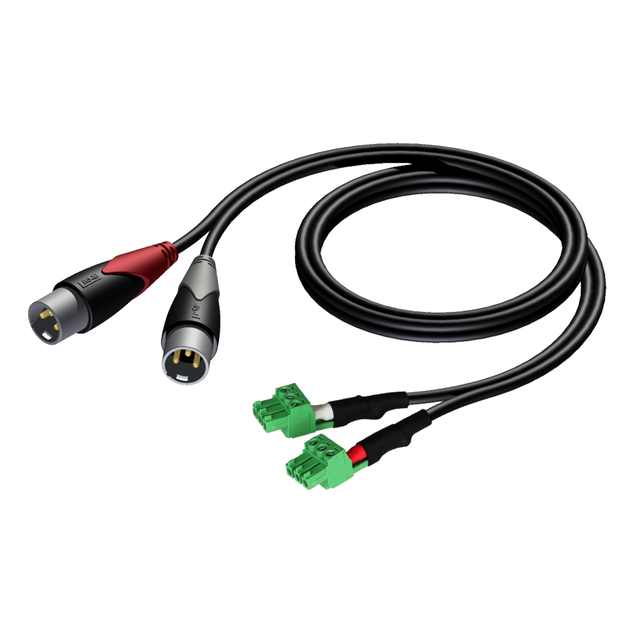 CLA834 - 2 x XLR male - 2 x terminal block (3p - 3.81mm)
